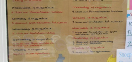 Programma Bouwspeeltuin Pendrecht 7