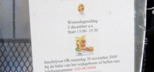 Sinterklaasactiviteit in de Middelburgt