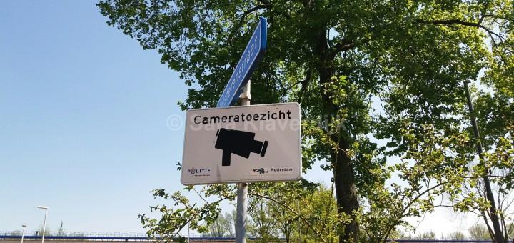 camera copyright