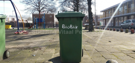 bio b